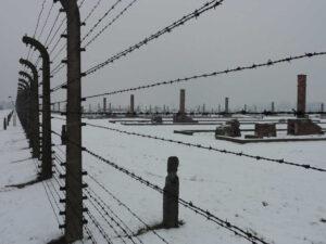 Auschwitz-Birkenau Abschnitt BII