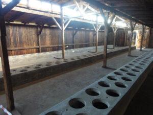 Auschwitz-Birkenau Sanitär-Baracke