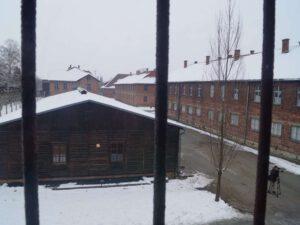 Auschwitz-Birkenau Block 11